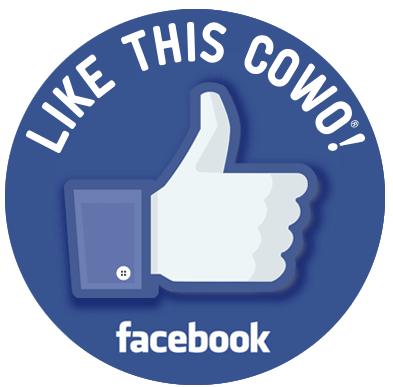 Pagina Facebook Cowo Lissone